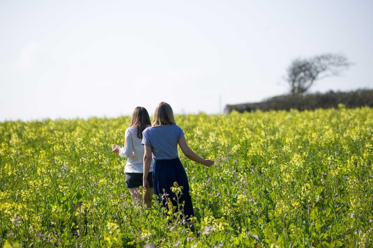 Two women walk through a field of yellow flowers in the Calamansac Estate on a sunny day